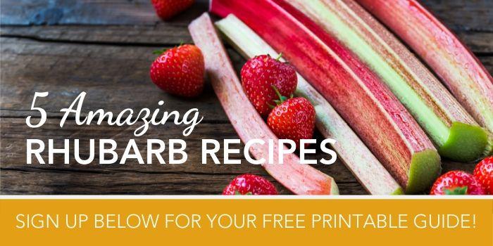 5 rhubarb recipes